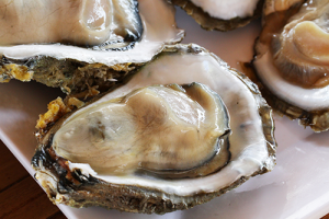 Oysters Disappoint at the 42nd Street Cafe in Seaview Washington